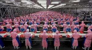 Foxconn: A következő generációs iPhone készülékeket már a Google robotjai gyárthatják