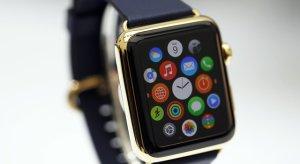Apple Watch: Röntgenfelvételek, akksiinfók és garanciális javítások