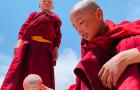 Indiában is szeretik a krikettet – új Shot on iPhone Xs videó