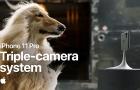 Három nagyszerű videó mutatja be az iPhone 11 Pro erősségeit