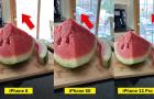 Kamerateszt: iPhone 8 vs iPhone SE vs iPhone 11 Pro