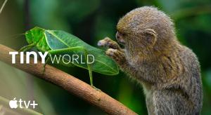 A természetfilmek világába is belekóstol az Apple